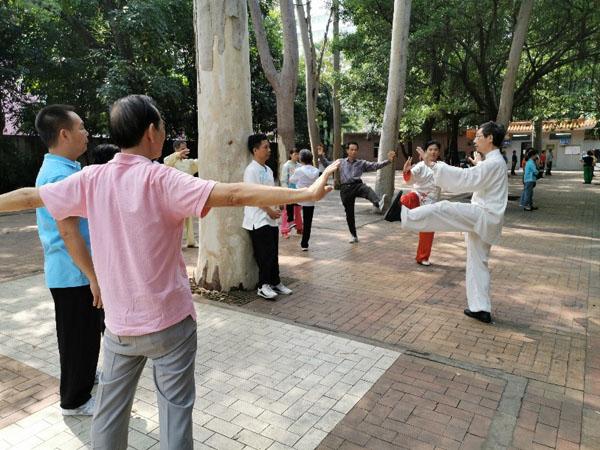 苏华祥老师讲解24式简化太极拳动作